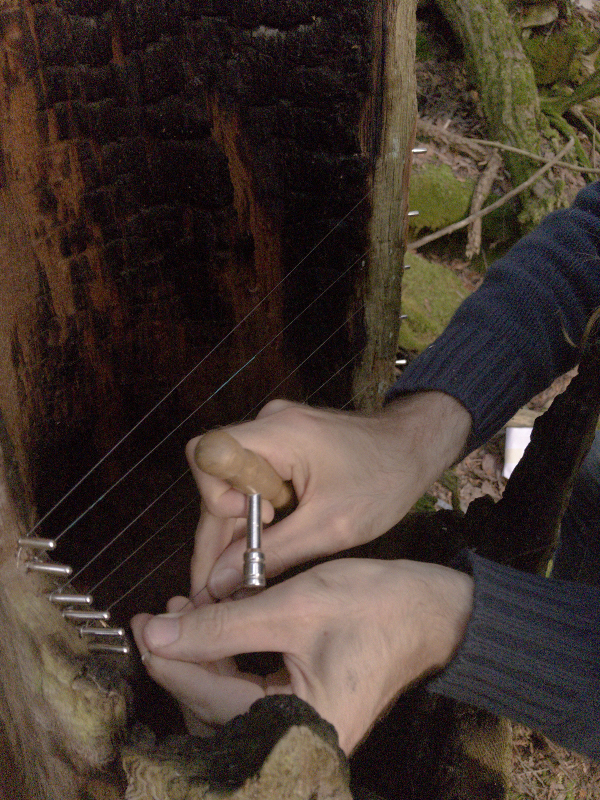 scenery treeharp making6